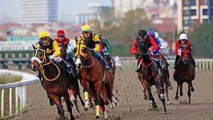 At yarışları ertelendi ancak Veliefendi Hipodromunda hayat devam ediyor