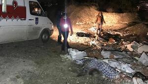 Ankarada korkunç olay Çuvalların içinde köpek ölüleri bulundu