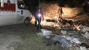 Ankarada çuvalların içinde ölü köpekler bulundu