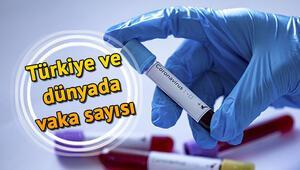 Türkiyedeki Corona virüsü (Korona virüsü) vakalarında son durum