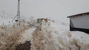 Beytüşşebap'ta kar nedeni ile kapanan köy yolları açılıyor
