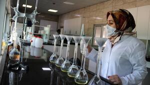 Şanlıurfada üretiliyor Körfez ülkeleri, Avrupa ve ABDye satılıyor