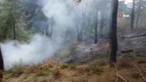 Son dakika Balıkesirin Dursunbey ilçesinde orman yangını