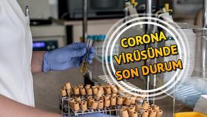 Sağlık Bakanı Fahrettin Kocanın Twitterdan gün gün corona virüsü (koronavirüs) açıklamaları ve uyarıları