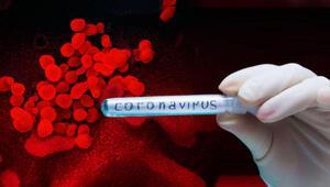 Katar, Ürdün ve Tunusta koronavirüs vakaları arttı