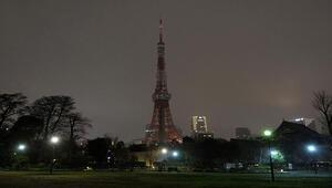 Işıklar doğa ve insan için dayanışma temasıyla kapatıldı