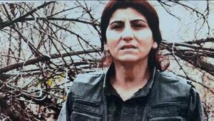 Son dakika haberleri... Terör örgütü PKKnın sözde üst düzey ismi etkisiz hale getirildi