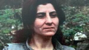 PKKnın sözde tepe isimlerinden Nazife Bilenin öldürülmesiyle ilgili detaylar