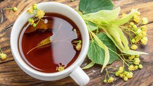 Vücut direncinizi güçlendirecek 5 bitki çayı