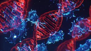 Geliştirilen basit bir kan testiyle 50den fazla kanser türü tespit edilebildi