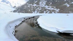 Yaylada doyumsuz kar manzarası