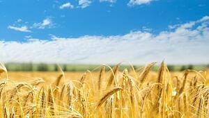 Gıdada üretim ve tedarik planlamaları yapıldı