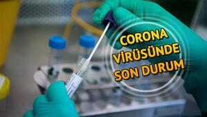 Türkiye corona virüsü illere göre dağılım haritası... İtalya, ABD, İspanya ve dünyada koronavirüs ölüm ve vaka sayısı