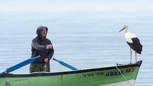 Türkiyenin tek Avrupa Leylek Köyü, Kuş Cennetine dönüşecek