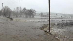 Karakoçanda yağmur sele neden oldu
