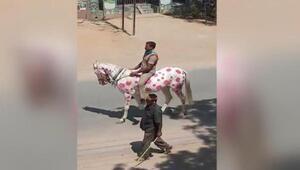 Hindistanda ilginç Corona Virüs uyarısı: Atın üzerine virüsün resmini çizdi