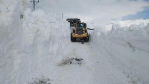Yüksekovada askeri üs bölgesinin yolu, kardan kapandı