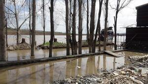 Dicle Nehri kıyısında bulunan kafeler sular altında kaldı