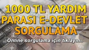 1000 TL sosyal yardım parası E-Devlet sorgulama ekranı.. İnternetten sorgulama nasıl yapılır