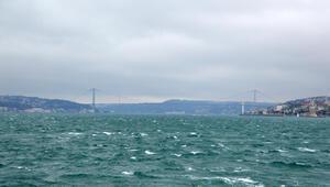 İstanbul için dün turuncu alarm verilmişti Ağaç devrildi, şiddetli rüzgar var