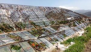 Antalyada şiddetli rüzgarda 400 dönüm sera zarar gördü