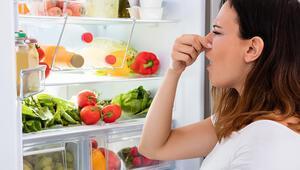 Buzdolabında oluşan kötü koku nasıl giderilir