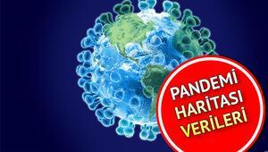 Pandemi nedir Corona virüsü ile gündeme gelen pandemi ne demek İstanbul pandemi haritası paylaşıldı