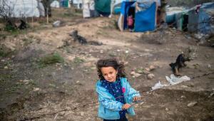 Almanya sığınmacı çocuklar için hareket geçiyor