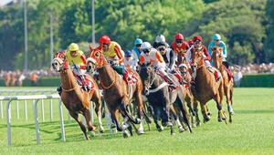 Son Dakika   Tarım ve Orman Bakanlığı: At yarışları için Mayıs ayının ilk haftasında karar vereceğiz
