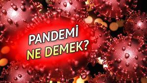 Pandemi nedir Pandemi ne demek