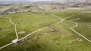 Ahlat'ın tarihi mekanlarında korona virüs sessizliği