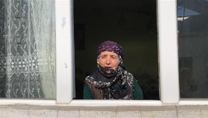 Evinde karantinadaki 75 yaşındaki kadından kampanyaya inek bağışı