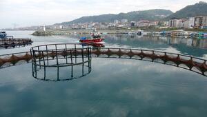 Karadeniz'de av sezonu bitti, kültür balıkçılığına ilgi arttı