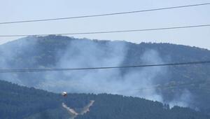 Kartalda orman yangını
