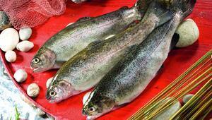 Evde hayat, sofrada balık kampanyası devam ediyor