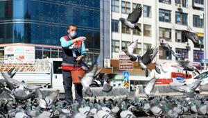 Büyükşehir Belediyesinden sokak hayvanlarına mama desteği