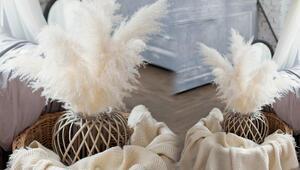 Pampas otunu ev dekorasyonunda nasıl kullanabilirsiniz