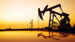 Petrole çare aranıyor
