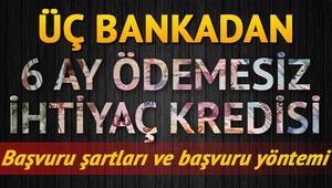Kredi başvurusu temel ihtiyaç kredisi 6 ay ödemesiz 10 bin TL Ziraat Halkbank Vakıfbank başvuru ekranı