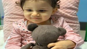 Minik Liya sağlığına kavuşmak için kök hücre bekliyor