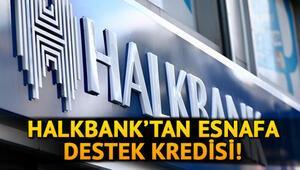 Esnaf destek kredisi başvuru şartları nedir Halkbank esnaf destek kredisi başvurusu nasıl yapılır
