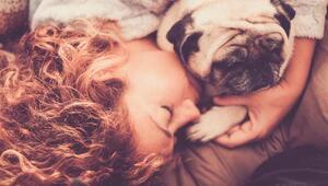Burcunuza Göre #evdekal Sürecinde Hayvan Dostlarınızla Yapabileceğiniz Aktiviteler