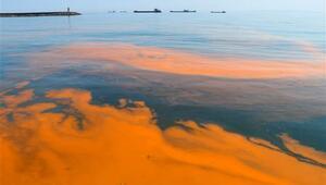 Marmara Denizinde şaşırtan görüntü