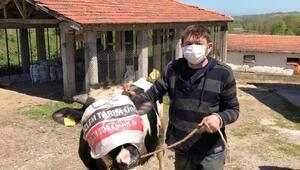 Salgın nedeniyle mevlit yapamayınca hayvanı satıp parasını kampanyaya bağışladı