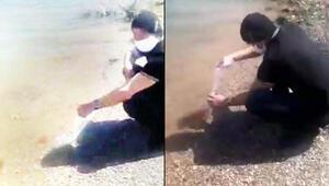 İzinsiz Altınapa Baraj Gölüne bıraktığı balıkların, Japon balığı olduğu ortaya çıktı
