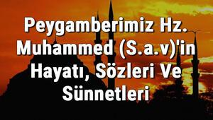 Peygamberimiz Hz. Muhammed (S.A.V)in Hayatı, Sözleri ve Sünnetleri