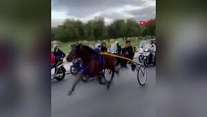 İtalya sokaklarında yasa dışı at yarışı görenleri hayrete düşürdü
