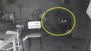Güvenlik kamerasını izleyince şaşkına döndü