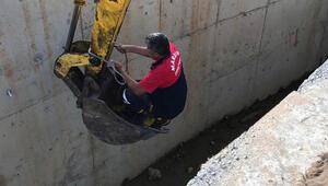 Sulama kanalına düşen eşeği itfaiye kurtardı