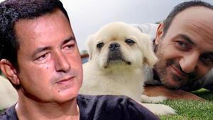 Köpeğinin öldüğünü Ersin'e söylemeliyiz